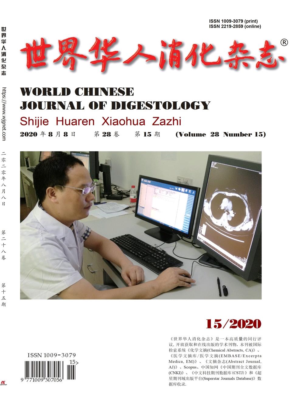 《世界华人消化杂志》