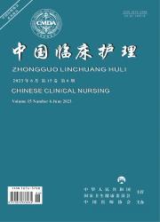 《中国临床护理》