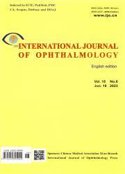 《国际眼科杂志:英文版》