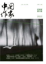 《中国作家.纪实》