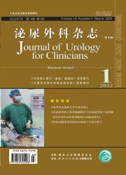 《泌尿外科杂志(电子版)》