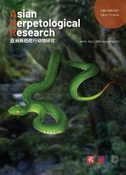 《亚洲两栖爬行动物研究:英文版》