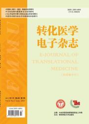 《转化医学电子杂志》