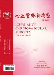 心血管外科杂志(电子版)
