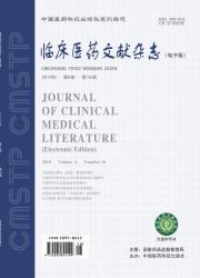 《临床医药文献电子杂志》