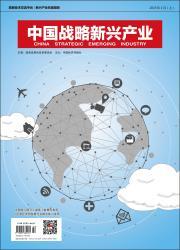 《中国战略新兴产业(理论版)》