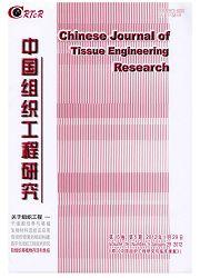 《中国组织工程研究与临床康复》