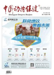 《中国动物保健》