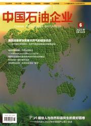 《中国石油企业》