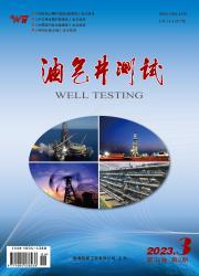 《油气井测试》