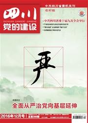 《四川党的建设:农村版》
