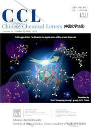 《中国化学快报:英文版》