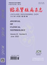 《临床肾脏病杂志》