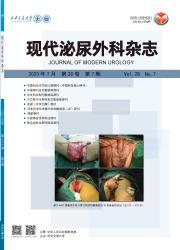 《现代泌尿外科杂志》