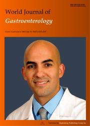 《世界胃肠病学杂志:英文版》