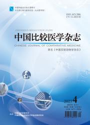 《中国比较医学杂志》