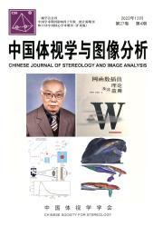 《中国体视学与图像分析》