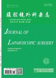 《腹腔镜外科杂志》