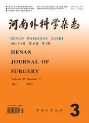 《河南外科学杂志》