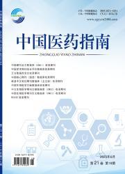 《中国医药指南》