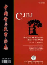 《中国骨与关节杂志》