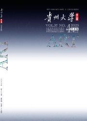 贵州大学学报:艺术版