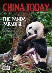 今日中国:英文版