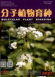 《分子植物育种》