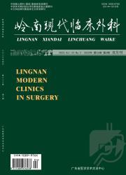 《岭南现代临床外科》