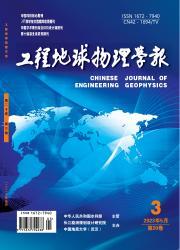《工程地球物理学报》