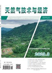 《天然气技术与经济》