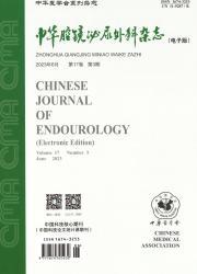 《中华腔镜泌尿外科杂志(电子版)》