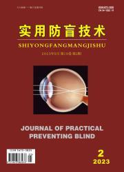 《实用防盲技术》