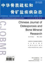《中华骨质疏松和骨矿盐疾病杂志》