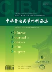 《中华骨与关节外科杂志》