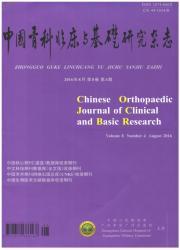 《中国骨科临床与基础研究杂志》