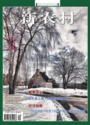 《新农村(黑龙江)》