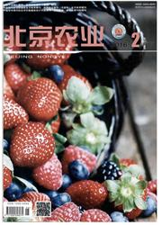 《北京农业:下旬刊》