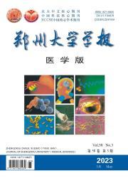 《郑州大学学报:医学版》
