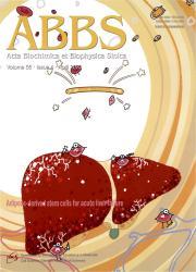 《生物化学与生物物理学报:英文版》