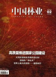 《中国林业》