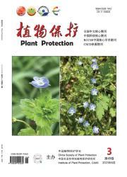 《植物保护》