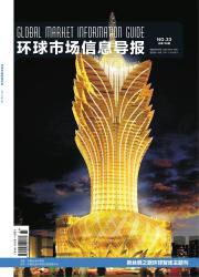《环球市场信息导报》