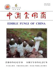 《中国食用菌》