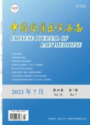 《中国疼痛医学杂志》