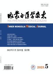 《内蒙古医学杂志》