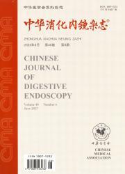 《中华消化内镜杂志》