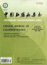 《中国肛肠病杂志》