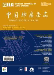 《中国肺癌杂志》