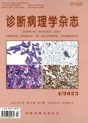 《诊断病理学杂志》